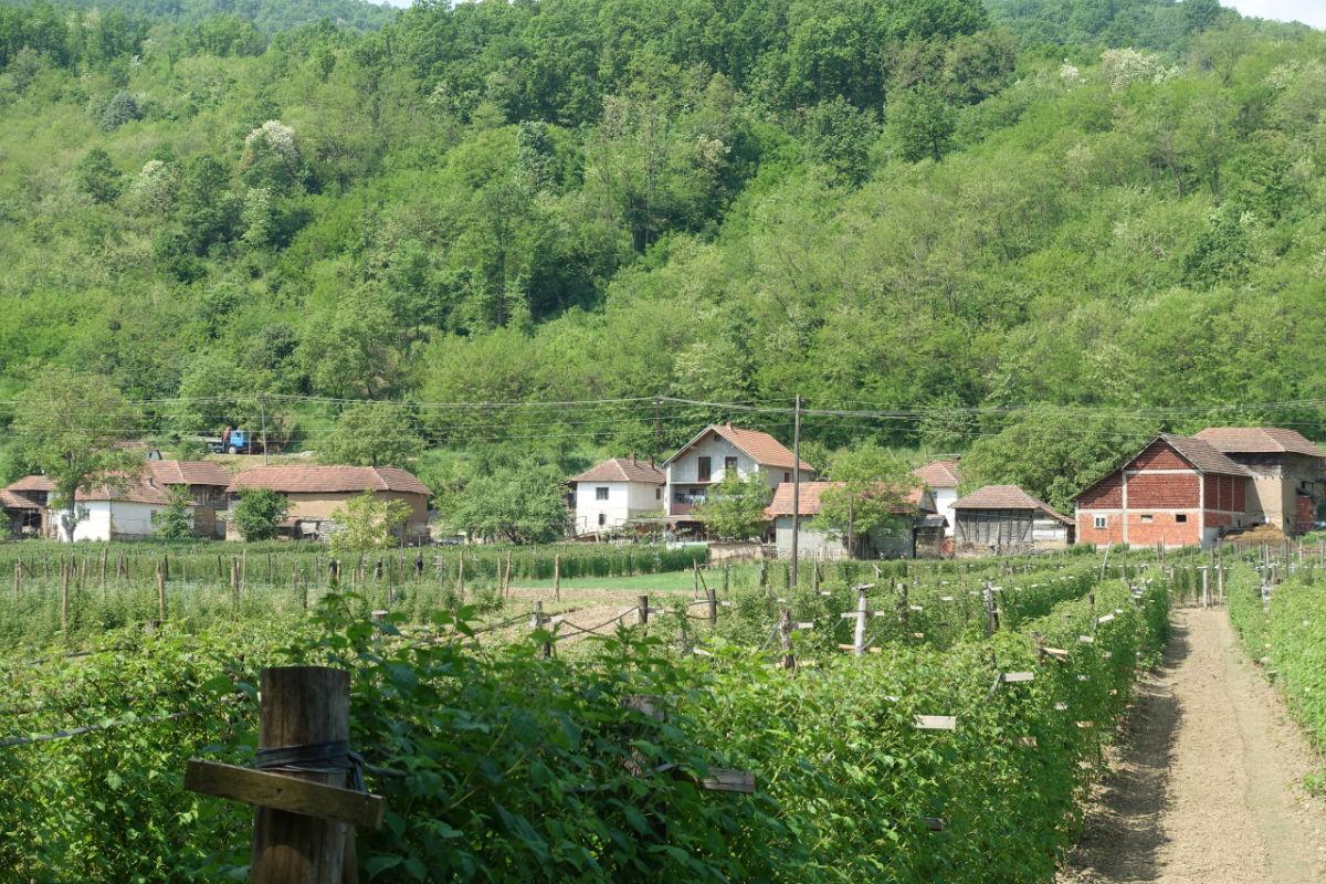 Bauernhof in Pupovci, Serbien